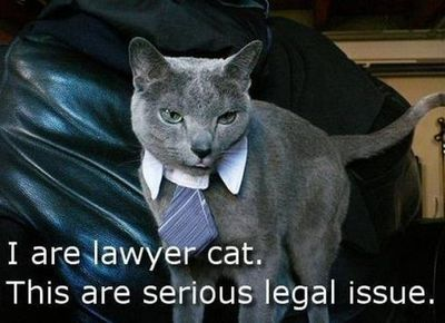 lolcat-i-are-lawyer-cat
